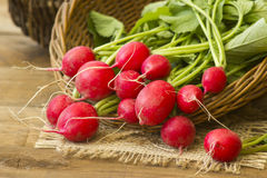 Fresh radishes. On old wooden table Stock Photo