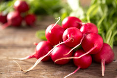 Fresh radishes on old wooden table. Close up Royalty Free Stock Photo