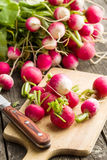 Fresh radishes on old wooden table. Stock Image