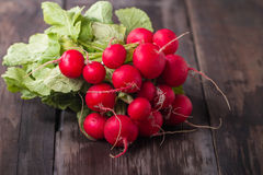 Fresh radishes on old wooden table. Fresh radishes on old dark wooden table Royalty Free Stock Photos