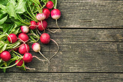 Fresh radishes on old wooden table. Stock Photography