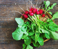 Fresh radishes on old wooden table. In a wicker basket Royalty Free Stock Photography
