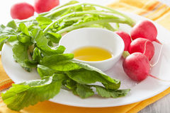 Fresh radishes and olive oil on plate.  Stock Photo