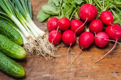 Fresh radishes, onion and cucumbers on old rustic wooden table. At a countryside farm Stock Images