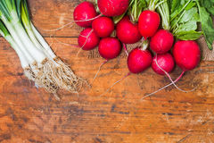 Fresh radishes and onion on old rustic wooden table. At a countryside farm Royalty Free Stock Photos