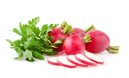 Fresh Radishes and Parsley. Fresh Red Radishes and Parsley on White Background Stock Images