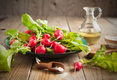 Fresh radishes on a plate. Fresh radishes with pink salt on a plate Royalty Free Stock Image