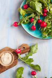 Fresh radishes on a plate. Fresh radishes with salt on a plate Stock Photography