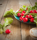 Fresh radishes on a plate. Fresh radishes on wooden table Stock Images