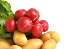 Fresh radishes and potatoes. On a white background Stock Image