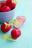Fresh radishes Royalty Free Stock Photography