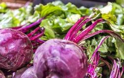 Fresh Radishes Section On Retail Supermarket.  Stock Photos