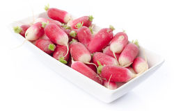Fresh radishes in a serving dish. On white Royalty Free Stock Photos
