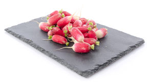 Fresh radishes on a slate plate. On white Royalty Free Stock Photo