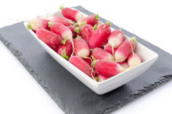 Fresh radishes on a slate plate. On white Royalty Free Stock Images