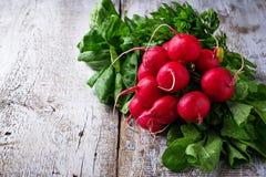 Fresh radishes, spinach and parsley. Fresh radishes, spinach, parsley. Selective focus Royalty Free Stock Photo