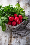 Fresh radishes, spinach and parsley. Fresh radishes, spinach, parsley. Selective focus Stock Images