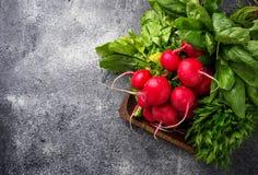 Fresh radishes, spinach and parsley. Fresh radishes, spinach, parsley. Selective focus Royalty Free Stock Photos