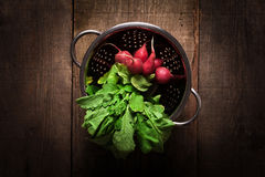 Fresh radishes in steel stainless colander. On wooden table Stock Photography