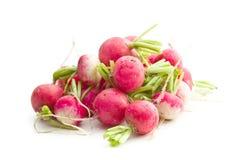 Fresh radishes vegetable. Fresh radishes isolated on white background. Healthy vegetable. Red radishes Royalty Free Stock Images