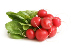 Fresh radishes. On a white background Royalty Free Stock Photos