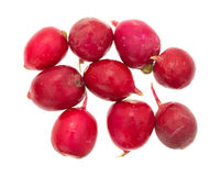 Fresh radishes on a white background. A small group of  fresh radishes isolated on a white background Stock Photography
