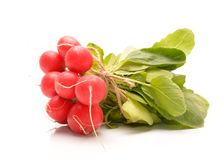 Fresh radishes on a white background. In studi0 Royalty Free Stock Photos