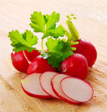 Fresh  radishes  . Stock Photo