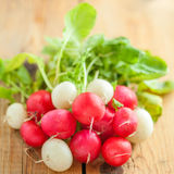 Fresh Radishes on wooden background. Close-up shot Royalty Free Stock Photo