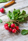 Fresh radishes on wooden background. Selective focus Stock Images