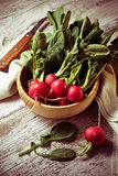 Fresh radishes on wooden background. Selective focus Royalty Free Stock Image