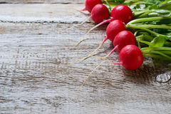 Fresh radishes on wooden background. Selective focus. Space for text Stock Photos