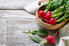 Fresh radishes on wooden background. Selective focus. Space for text Royalty Free Stock Photography