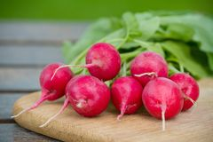 Fresh radishes on a wooden board. Fresh radishes on a wooden cutting board Royalty Free Stock Images