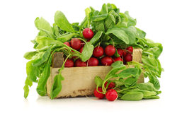 Fresh radishes in a wooden crate. On a white background Stock Image