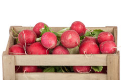 Fresh radishes in a wooden crate, isolated on white Stock Images