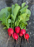 Fresh radishes on wooden table. Fresh radishes on wooden, aged table Stock Photography