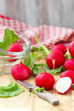Fresh radishes on wooden table. Fresh sliced radishes on wooden table Stock Photos