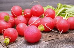 Fresh radishes on wooden table. In studio Royalty Free Stock Photography