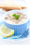 Fresh ragout fin Stock Photography