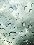 Fresh rain droplets Royalty Free Stock Photography