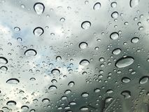 Fresh rain droplets Royalty Free Stock Images