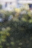 Fresh rain splash drops on a window with background nature in Bl Royalty Free Stock Images