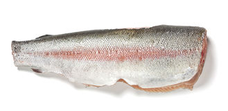 Fresh rainbow trout Royalty Free Stock Photography