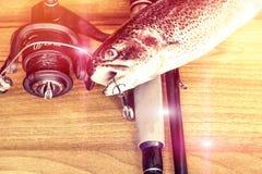 Fresh rainbow trout closeup,Soft lighting effect. Royalty Free Stock Photos