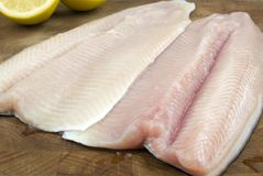Fresh rainbow trout filets. On a wooden cutting board with cut lemon in the background Royalty Free Stock Images
