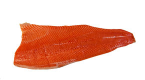Fresh rainbow trout fillet. Piece of delicious rainbow fillet for a healthy lifestyle Royalty Free Stock Image