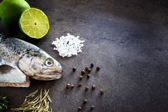 Fresh rainbow trout with lime and seasoning. Fish at dark background. Detail of preparation. Fresh rainbow trout with lime and seasoning. Fish at dark background Royalty Free Stock Photo