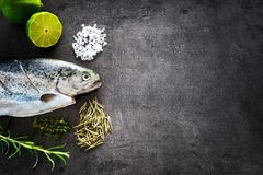 Fresh rainbow trout with lime and seasoning. Fish at dark background. Detail of preparation. Fresh rainbow trout with lime and seasoning. Fish at dark background Stock Images