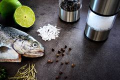Fresh rainbow trout with lime and seasoning. Fish at dark background. Detail of preparation. Fresh rainbow trout with lime and seasoning. Fish at dark background Stock Image